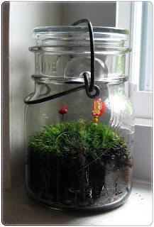 How To-sday – Vintage Apothecary Jar Moss Terrarium thumbnail