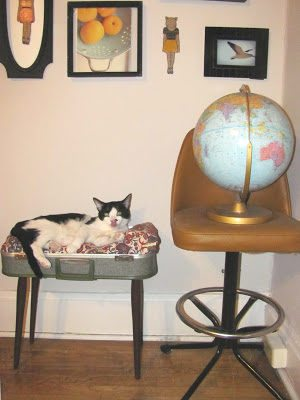 how to-sday . vintage suitcase cat bed thumbnail