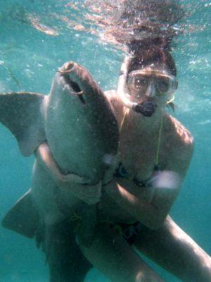 lindsay hugs all the animals . shark thumbnail