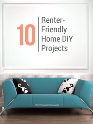 10 Renter Friendly Home DIY Tutorials thumbnail
