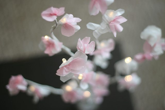 Cherry Blossom Lights Tutorial on Shrimp Salad Circus