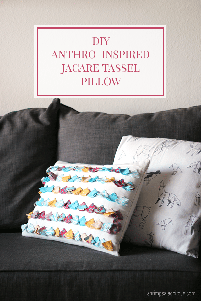 DIY Anthropologie Tasseled Jacare Pillow