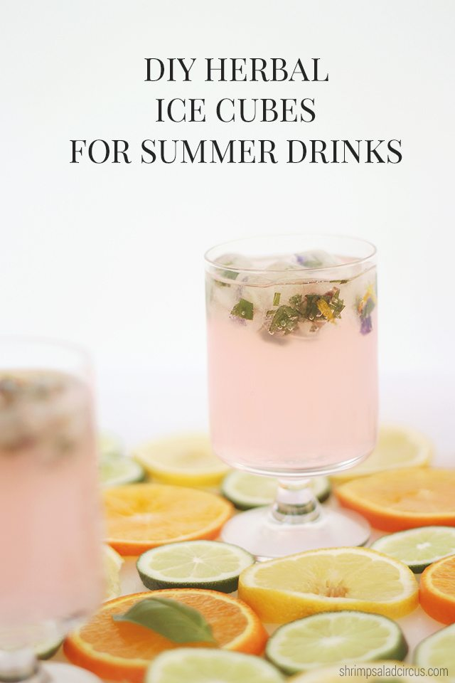 Fruit and Herb Pairing with Infused Ice Cubes