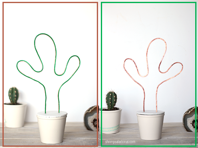 Front & Back of Cactus DIY Neon Sign in Plant Pot
