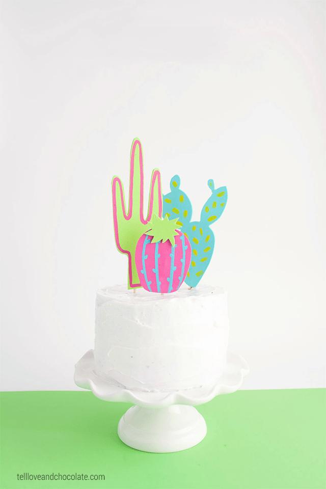 10 Cactus Crafts 5