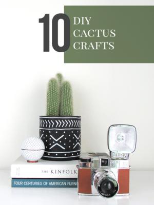 10 DIY Cactus Crafts thumbnail