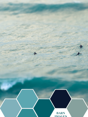 Color Inspiration – Everybody Was Surfing thumbnail
