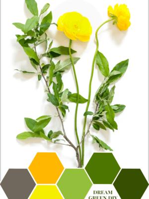 Dream Green DIY – Color Inspiration thumbnail