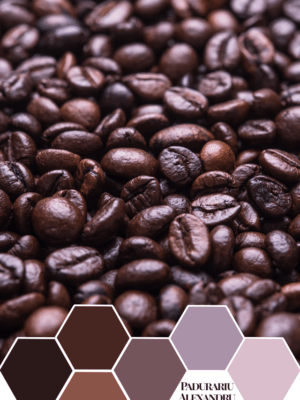 Counting Coffee Beans – Color Inspiration thumbnail