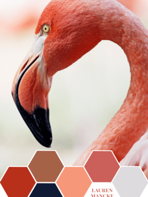 Lauren Mancke's Pink Flamingo – Color Inspiration thumbnail