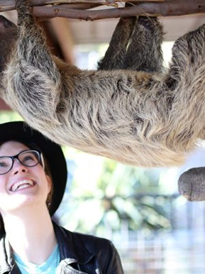 That Time I Got to Meet a Sloth – Lindsay Hugs all the Animals thumbnail
