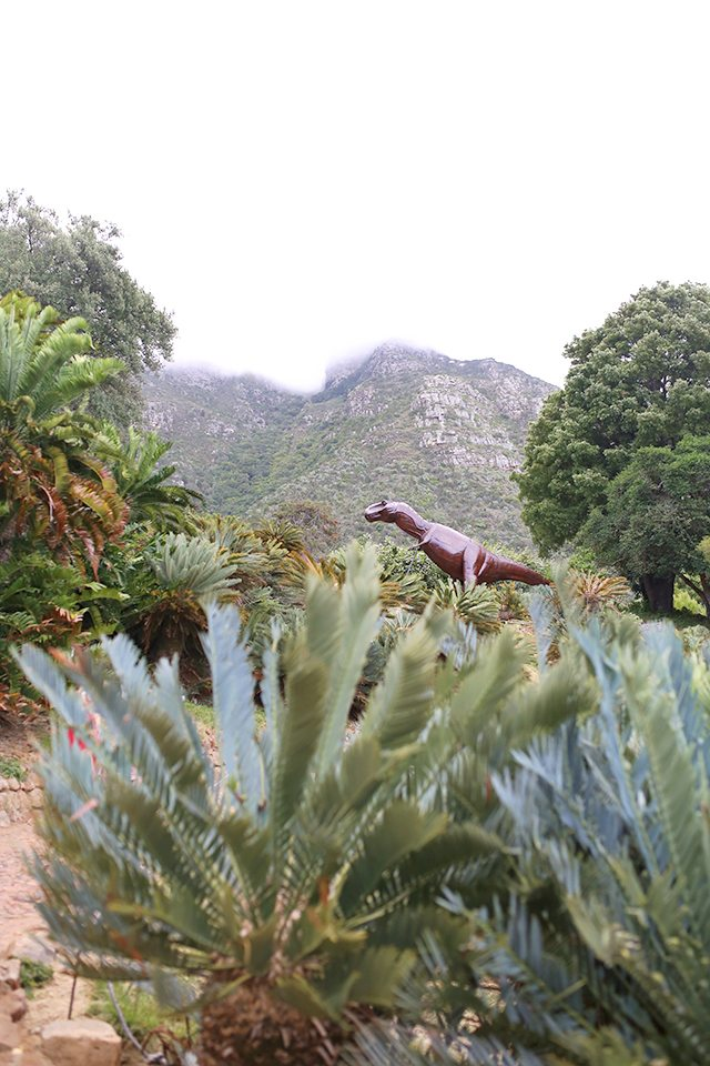 Cape Town Travel Guide - What to See - Kirstenbosch National Botanical Gardens
