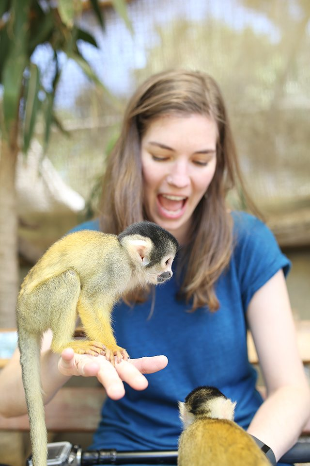Cape Town Travel Guide - What to See - World of Birds Wildlife Sanctuary Squirrel Monkey Jungle