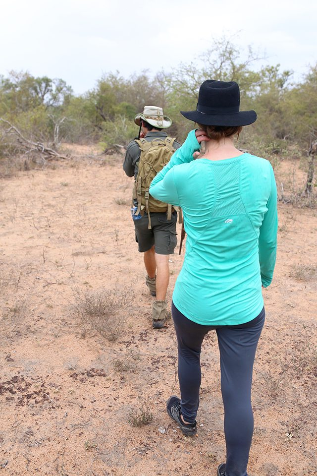 Safari at Kruger Travel Guide - What to Do - Guided Walking Safari with Africa on Foot