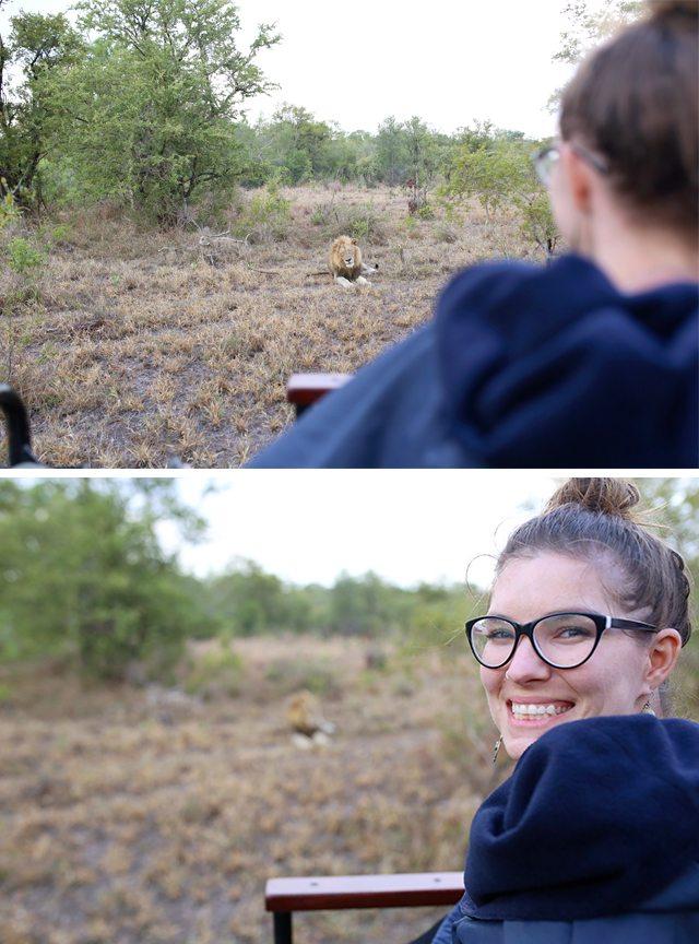Safari at Kruger Travel Guide - What to Do - Lion Sighting on Driving Safari at Tintswalo Safari Lodge