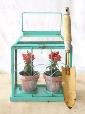 Easy DIY Flower Terrarium – How To-sdsay thumbnail