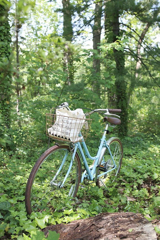 Tips for Choosing the Right Bike Basket - Copper Wire Basket