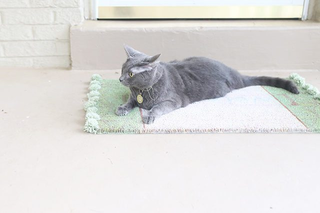 DIY Pom Pom Rug Doormat Tutorial - Cat Approved