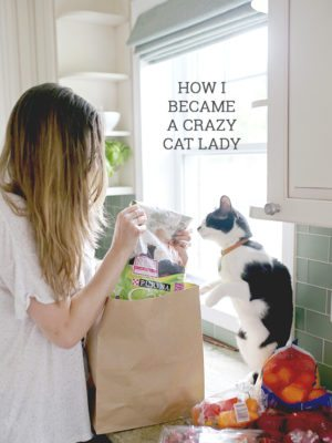 How I Became a Crazy Cat Lady (Spoiler Alert: It's Genetic) thumbnail