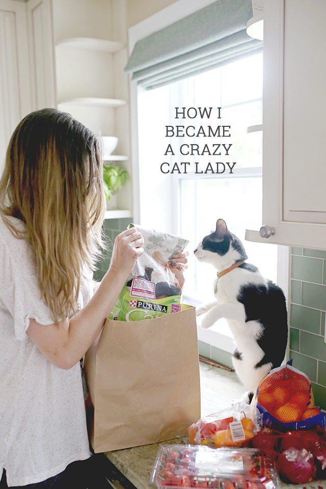 How I Became a Crazy Cat Lady