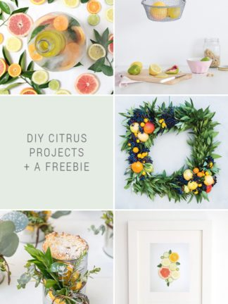 DIY Citrus Projects + Favorite Finds No. 89 thumbnail