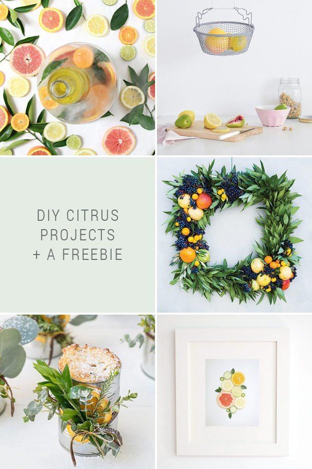 DIY Citrus Projects