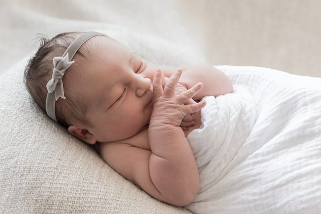 Fresh 48 Newborn Photos - Shrimp Salad Circus