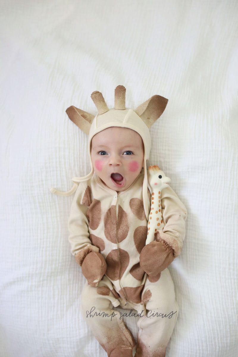 diy sophie the giraffe baby halloween costume - shrimp salad circus