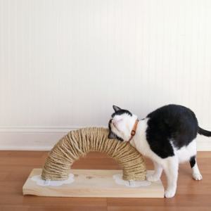 How to Make a Modern Rainbow DIY Cat Scratch Pad