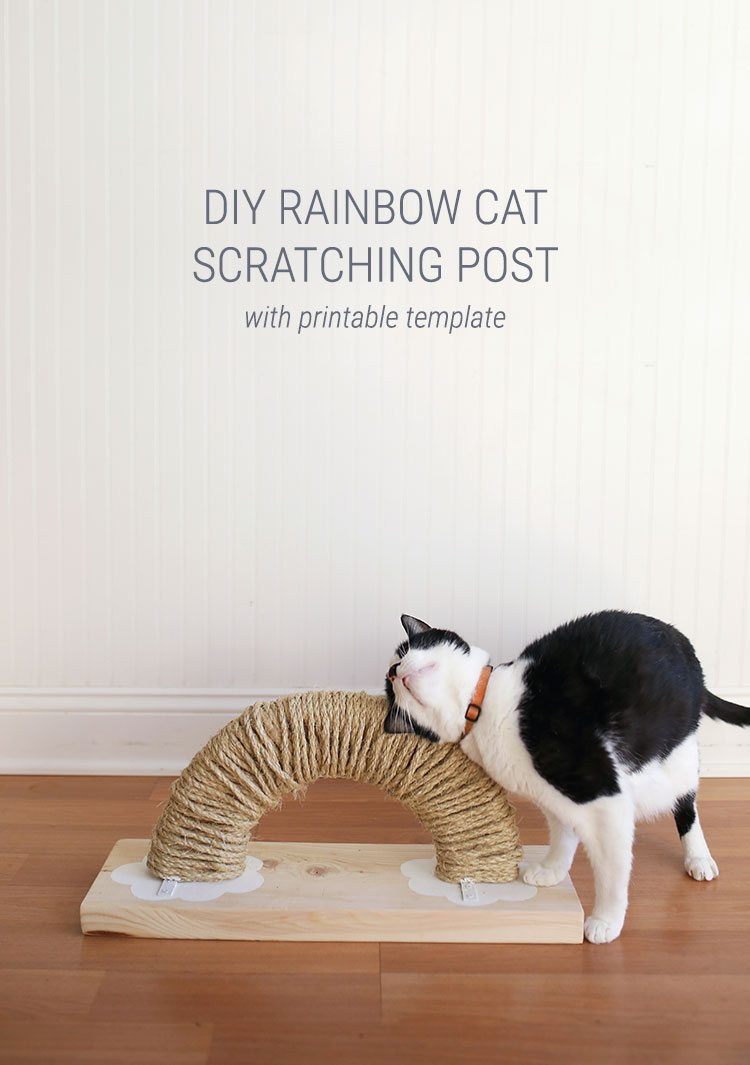 How to Make a Modern Rainbow Cat Scratch Pad With Plans and Free Printable Template