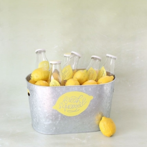 DIY Fresh-Squeezed Lemonade Summer Party Cooler + Free Cricut Template