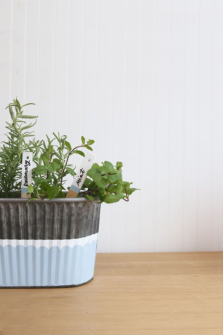 DIY Herb Garden With Painted Plant Markers