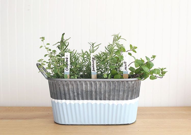 DIY Herb Garden in Galvanized Tub With Hand Lettered Plant Markers