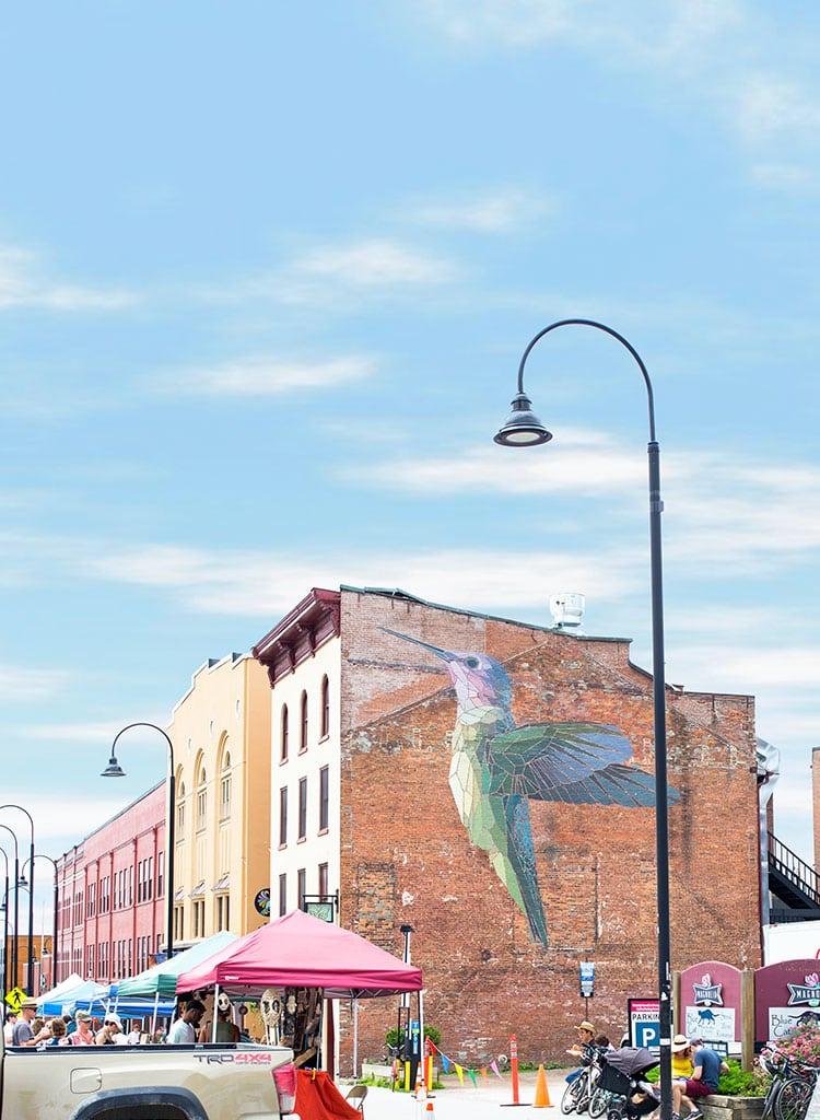 Burlington, Vermont Hummingbird Mural by Mary Lacy