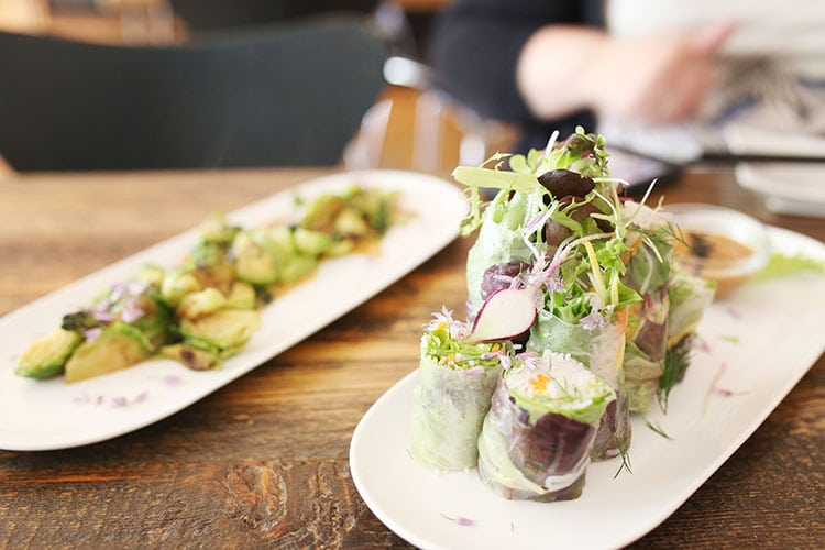Vietnamese Salad Rolls at Revolution Kitchen Vegetarian Restaurant in Burlington, Vermont