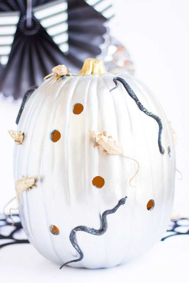 Creepy Crawly Pumpkin Decorating Idea