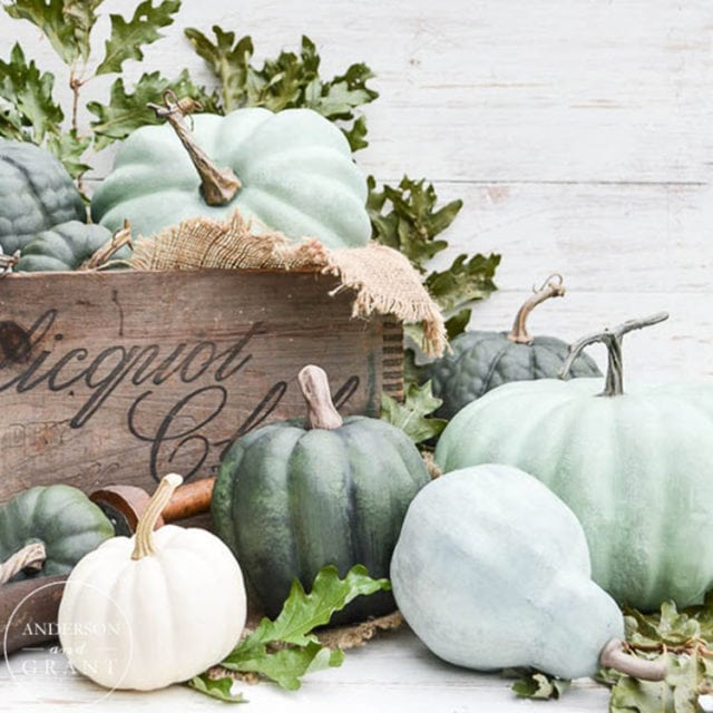 DIY Dry Brushed Chalk Painted Pumpkins
