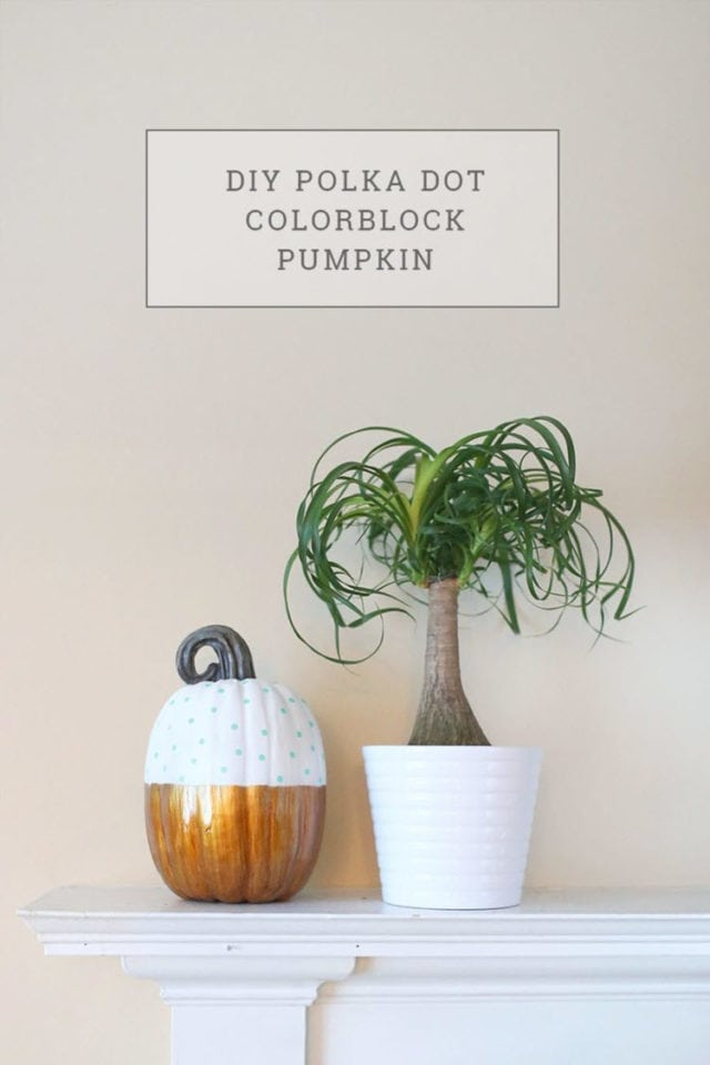 DIY Polka Dot Color Block Pumpkin