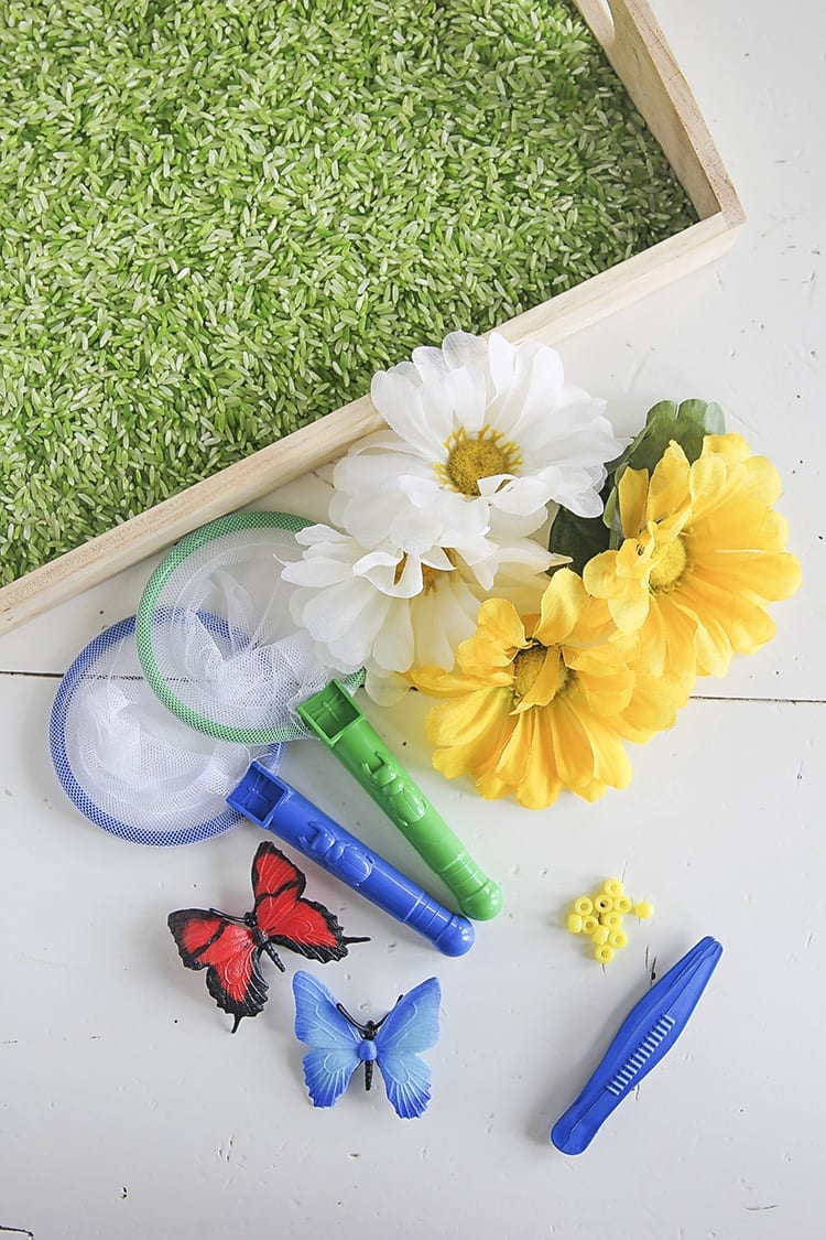 Butterfly Sensory Activities Supplies