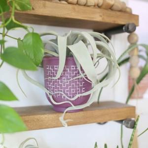 Boho Modern DIY Painted Terra Cotta Pots