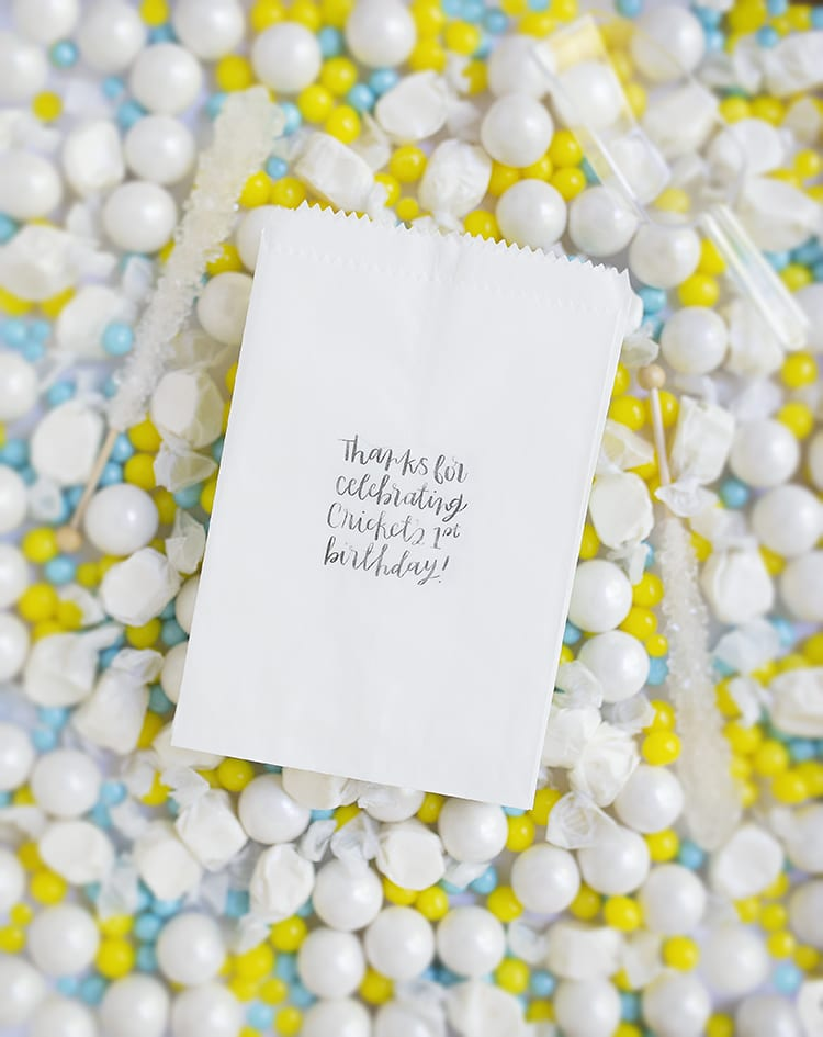 Make adorable custom DIY goodie bags for kids' birthday party favors. They're eco-friendly paper vellum bags, and they're cheap since you're making something simple and super elaborate. These are perfect first birthday party ideas for a candy buffet!
